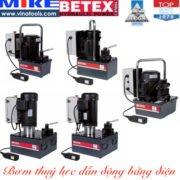 Hydraulic-electric-driven-pump-betex