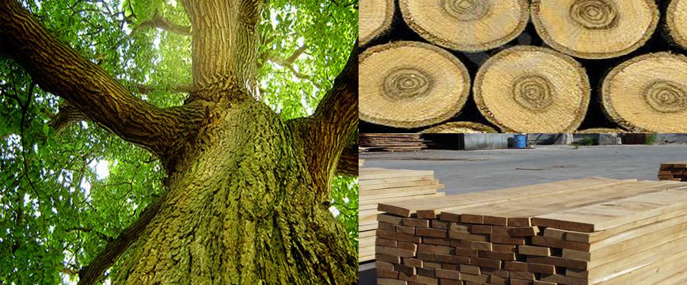 thước gỗ sồi Stabila Germany